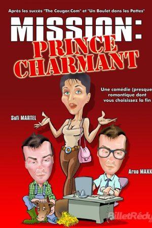 Mission prince charmant - comédi e - humour - aix - le Flibustier